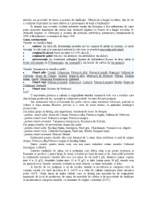 Analiza Piata Vinurilor - Pagina 4