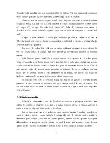 Poluarea Solului - Pagina 3