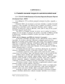 Accesarea Fondurilor Structurale Europene în Domeniul Dezvoltării Rurale - Pagina 4