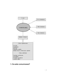 Managementul Comunicarii - Pagina 3