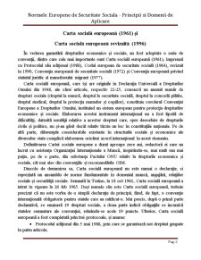 Normele Europene de Securitate Sociala - Principii si Domenii de Aplicare - Pagina 2
