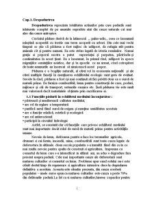 Despadurirea - Pagina 2