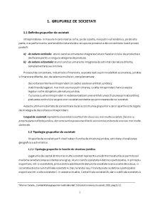 Contabilitatea Grupurilor Multinationale - Pagina 1