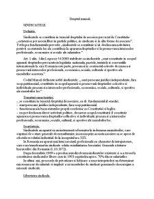 Dreptul Muncii - Sindicatele - Pagina 1