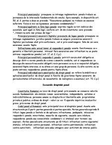 Drept Penal - Partea Generala I - Pagina 2