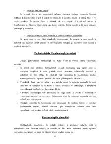 Bazele Teoretice ale Biotehnologiilor Microbiene - Pagina 4