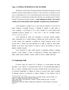 Curtea Europeana de Justitie si Actiuni Introduse in Fata Ei - Pagina 4