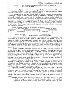 Activitatea Comercială în Cadrul Relațiilor de Piață - Pagina 1