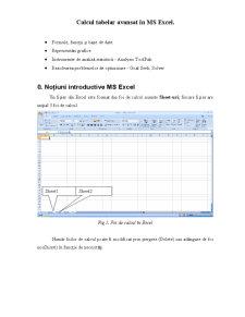 Curs Excel - Pagina 1