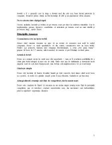 Studiu de Caz Amazon - Two Pizza Teams - Pagina 5