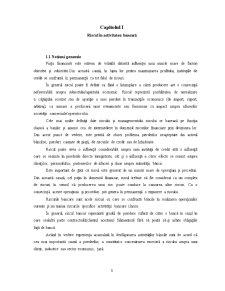 Managementul Riscului de Creditare la BRD Groupe Societe Generale - Pagina 3