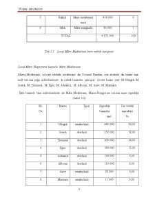 Aspecte privind Evolutia Calitatii Apei Marii in Zona Mamaia Nord - Constanta cu Ajutorul Multiparametrului PCD 6500 - Pagina 3