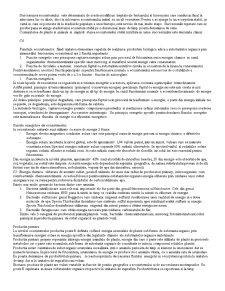 Structura Ecosistemelor - Pagina 2