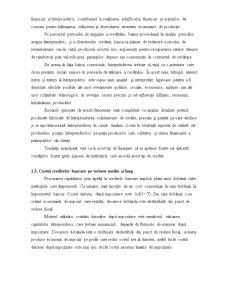 Creditarea Bancara - Pagina 5