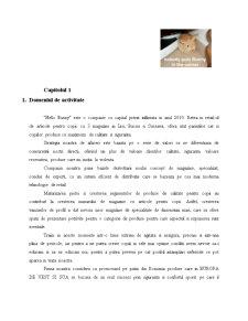 Hello Bunny - Proiecte Economice in Comert - Pagina 2