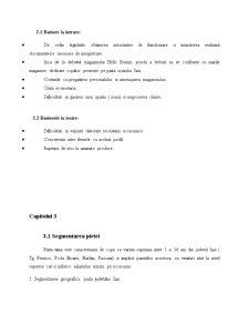 Hello Bunny - Proiecte Economice in Comert - Pagina 4