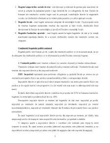 Contabilitate Publică - Pagina 3