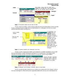 Microsoft Access 97 - Baze de Date - Pagina 2