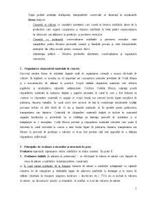 Organizarea Contabilității în Ramura Comerțului - Pagina 2