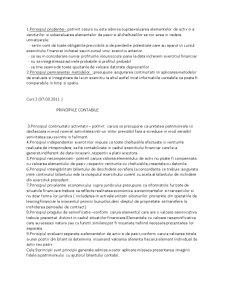 Organizarea Generala a Contabilitatii Societatilor Comerciale - Pagina 3