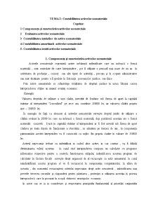 Contabilitatea Activelor Nemateriale - Pagina 1