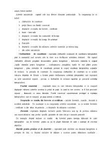 Contabilitatea Activelor Nemateriale - Pagina 2