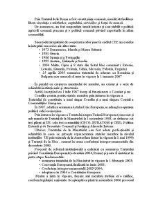 Analiza Celor Patru Procese de Integrare a Pietei Bunurilor - Pagina 4
