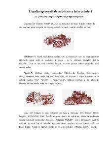 Viticultura si Vinificatie - Intreprinderea Chatau Vartely - Pagina 5