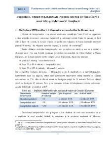 Fundamentarea Deciziei de Creditare Bancara a Unui IMM - Pagina 2