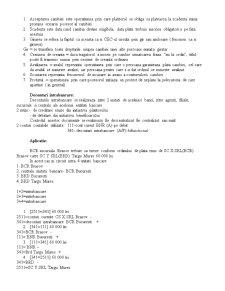 Contabilitatea Institutiilor de Credit - Pagina 4
