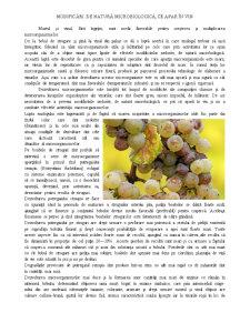Modificări de Natură Microbiologică ce Apar în Vin - Pagina 1