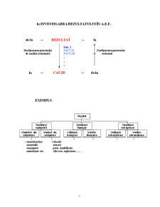 Bazele Teoretico-Metodologice ale Analizei Economico-Financiare - Pagina 3