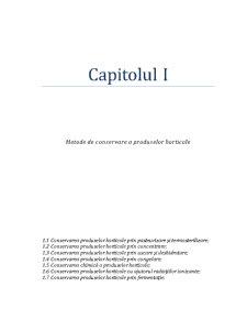 Sistem de Transport Pentru o Linie Tehnologica de Prelucrat Fasolea - Pagina 2