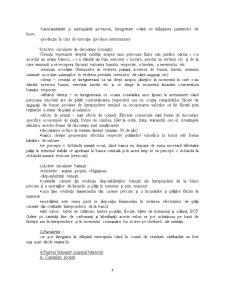 Cursuri Contabilitate An I - Pagina 4