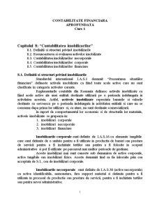 Contabilitatea Imobilizarilor - Pagina 1