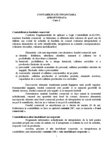 Contabilitatea Imobilizarilor - Pagina 5