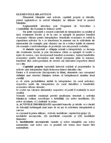 Elementele Bilantului - Pagina 1