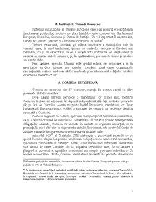 Master Drept Comunitar al Afacerilor - Pagina 3