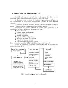 Tehnologia Morăritului - Pagina 1