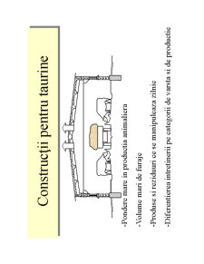 Constructii Rurale - Adaposturi pentru Taurine - Pagina 2