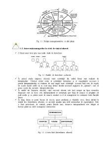 Introducere în Știința Managementului - Pagina 2