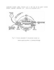 Fluxul de Energie - Informatie si de Substante in Ecosisteme - Pagina 2