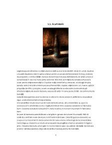 Controlul și Expertiza Berii - Pagina 4