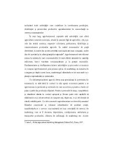 Conceptul și Funcțiile Agromarketingului - Pagina 2