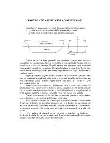 Nomenclatura și Structura Corpului Navei - Pagina 1