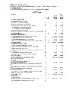 Organizarea Contabilitatii de Gestiune a Costurilor Globale la SC Mecanica Ceahlau SA - Pagina 1