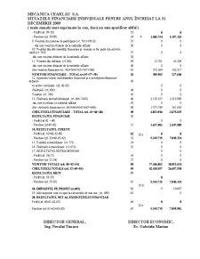 Organizarea Contabilitatii de Gestiune a Costurilor Globale la SC Mecanica Ceahlau SA - Pagina 5