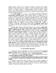 Economia de Piata - Piata Concurenta si Pretul - Pagina 3