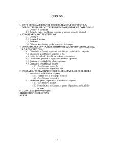 Contabilitatea Imobilizarilor Corporale si Deprecierii Acestora la SC - Pagina 3