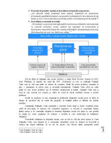 Cadrul Instituțional al ONU în Materia Drepturilor Omului - Pagina 3
